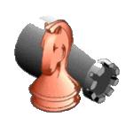 (Jeugd)schaakvereniging De Waagtoren